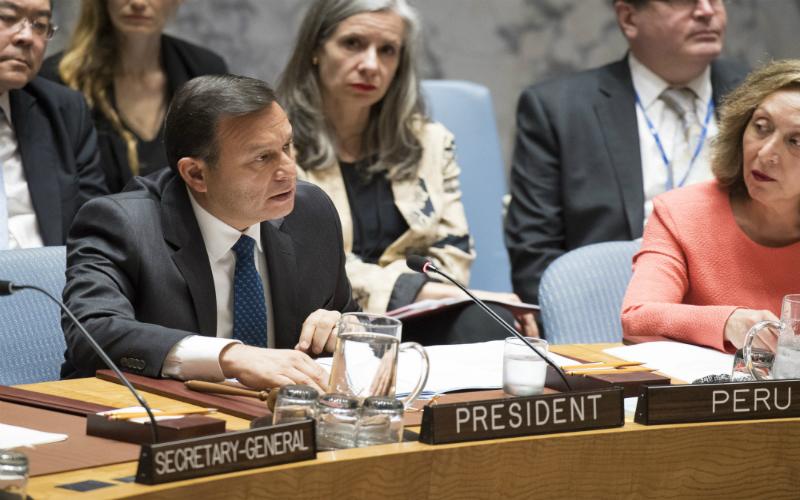 Canciller Néstor Popolizio preside sesión de alto nivel del Consejo de Seguridad y cumple intensa agenda de trabajo en las Naciones Unidas